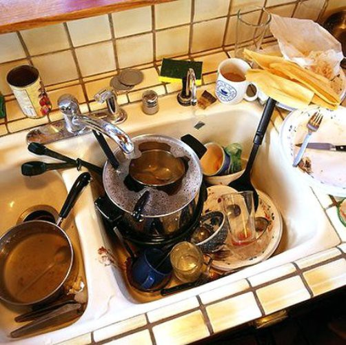 тараканы на кухне фото