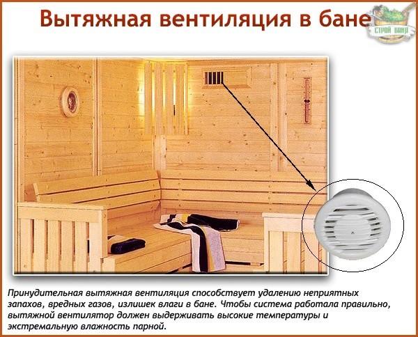система вентиляции против грибка в бане