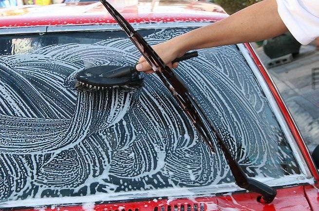 Как вывести пятна от мух с ткани, мебели, стекла и автомобиля