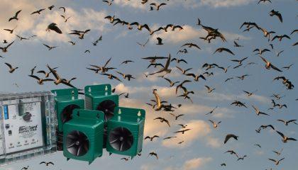 фото простого отпугивателя птиц