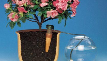 фото как сделать автополив цветов