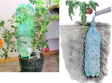 Применение для автополива пластиковых бутылок фото