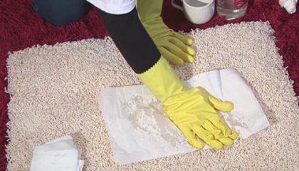 как вывести запах с ковра в домашних условиях