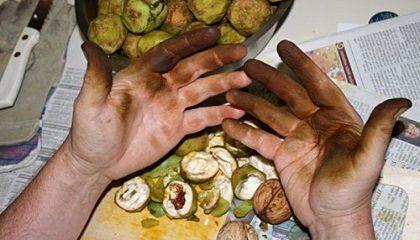 как вывести пятно от грецкого ореха